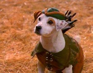 """Wishbone era interpretado por el Jack Russell Terrier """"Soccer"""""""